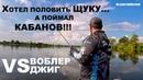 Хотел половить Щуку а поймал Кабанов Воблер VS Джиг Спиннинг летом на озере Рыбалка 2018