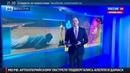 Новости на Россия 24 Фанаты ДиКаприо бурно отпраздновали победу