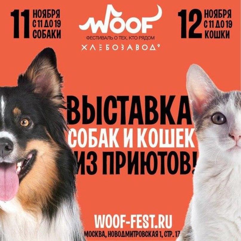 Яся Сухова | Москва