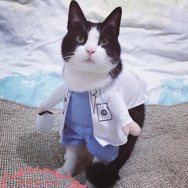 Доктор что с вами -