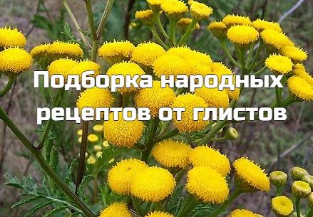 • Две полных ложки тыквенных семечек надо съесть натощак (для детей и