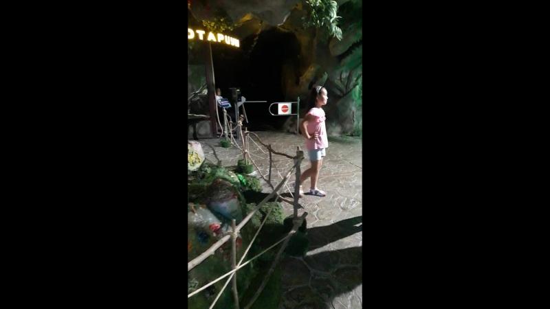 астана парк джунгли