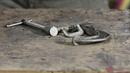 Десять незаменимых инструментов ножедела ltcznm ytpfvtybvs[ bycnhevtynjd yj;tltkf