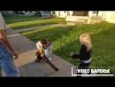 Маленький злодей (VIDEO ВАРЕНЬЕ)