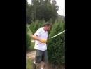 Christmas tree trimming - Two-Hand