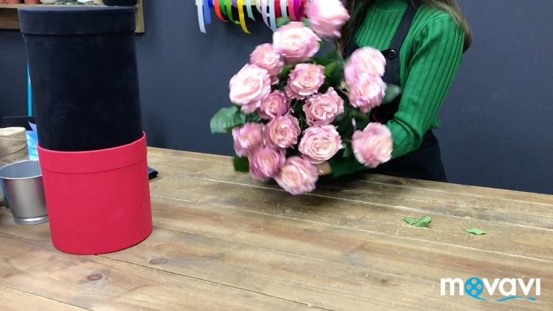 Розы сорта Tinted Pearl