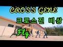 CROSS GENE [MIRROR] (크로스진) - '비상' Dance Version