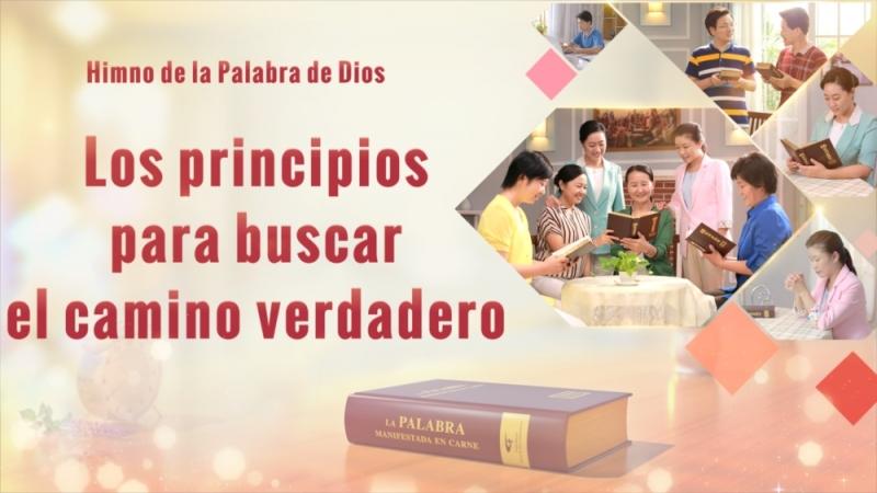 La mejor canción cristiana Los principios para buscar el camino verdadero