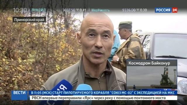 Новости на Россия 24 • Во Владивостоке ищут разгуливающего по улицам тигра