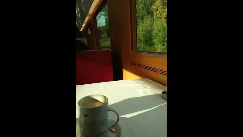 Кофе свежей обжарки из Ба... - Live