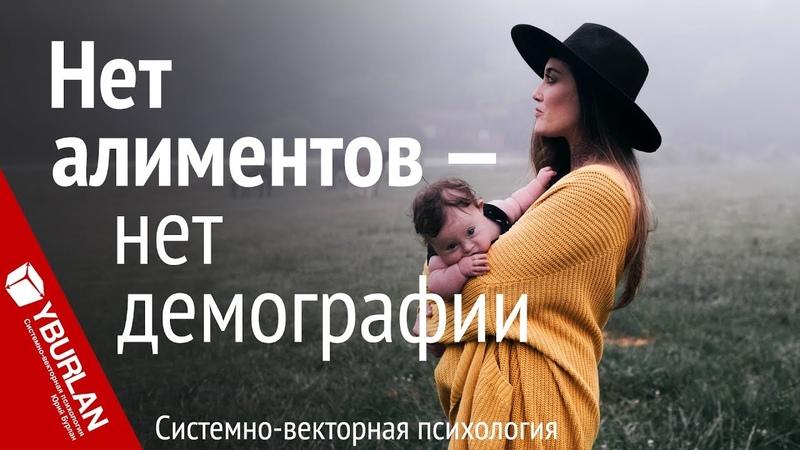 Нет алиментов нет демографии Системно векторная психология Юрий Бурлан