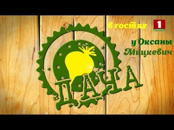 Программа Дача в гостях у Оксаны Мицкевич. Зеленые коктейли. Безглютеновый хлеб