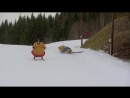 9 Sumo skiing Klæbo vs Ramm