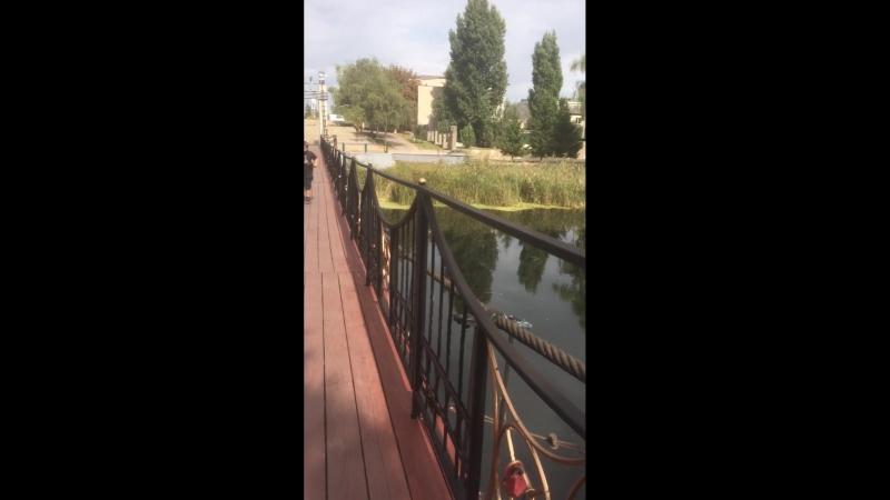 Мост на канатах он шатается 🙃