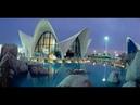 Oceanografic Aquarium Valencia 8