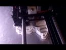 Печать штампа-вырубки Маленькая пони