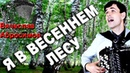 Я В ВЕСЕННЕМ ЛЕСУ ПИЛ БЕРЕЗОВЫЙ СОК под баян - поет Вячеслав Абросимов