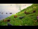 Съемки фото, ну и заодно видео в Царицыно с Катериной