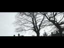 Arda Leen x empathy● • - n i g h t w a l k s.[ Official Video.]