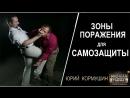 Зоны поражения для самозащиты Юрий Кормушин