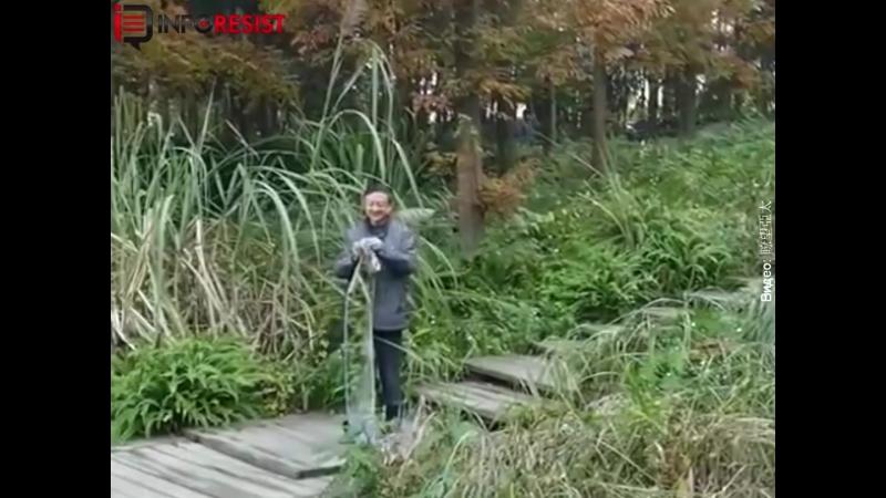 InfoResist - В Китае разработали ткань невидимку. Будет...