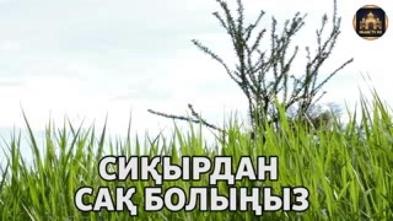 МЕККЕДЕ_ ҚАҒБА МАҒЫНАН СИҚЫРШЫНЫ ҰСТАП АЛДЫ_ СИҚЫР.mp4