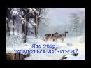 Як звірі готуються до зими?