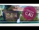 Термогигрометр для террариума | покупки с Aliexspress