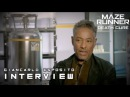 Maze Runner: The Death Cure - Giancarlo Esposito Jorge Interview