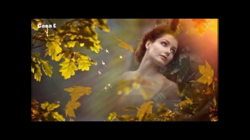 Листья желтые медлено падают. Люся Калгина.