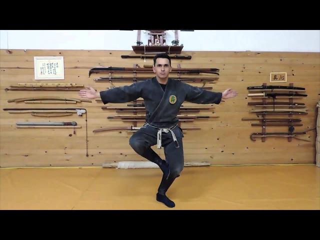 Ninjutsu Bujinkan - Kurai Dori (Koto Ryu Koppô Jutsu)