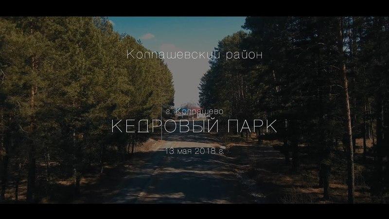 4K: Кедровый парк. г. Колпашево, Колпашевский район