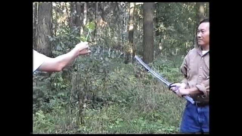 Катана (японский меч) в руках GM Ly Hong Thai (2001)