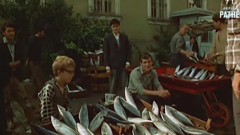 Стамбул в 1965-1966 годах