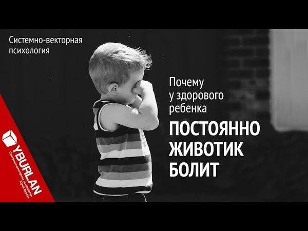 Почему у здорового ребенка постоянно животик болит. Системно-векторная психология