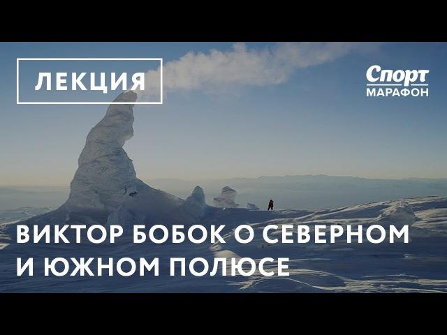 Виктор Бобок о Северном и Южном полюсе