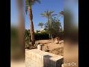 Sharm-el-Sheikh in Egypt 🇪🇬