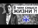 В ЧЕМ СМЫСЛ ЖИЗНИ Как прожить счастливую и долгую жизнь Михаил Дашкиев и Петр Осипов БМ