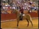 Pablo Hermoso y Merlin el mejor caballo de rejoneo de todos los tiempos