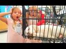 Челлендж 24 ЧАСА в ЗООМАГАЗИНЕ VLOG Как мы назвали Щенка Едем покупать ВСЕ ДЛЯ ЩЕНКА !! Николь