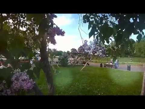 Прогулка по парку им. М. Горького (Xiaomi Yi 4k-1080р/zhr video)