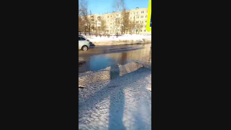 Пешеходный переход на перекрестке ул. Пушкинской и б-ра Химиков