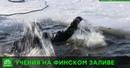 В Финском заливе рыбаков учились спасать с помощью беспилотников