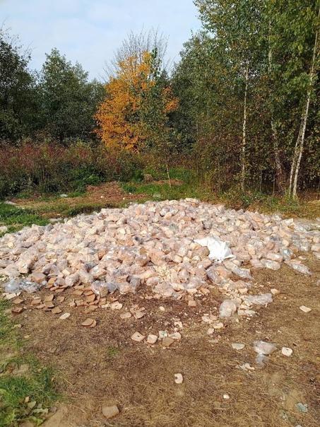 Свалка хлеба и строительного мусора обнаружена в В...