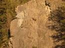 Леденящие душу фотографии горных козлов