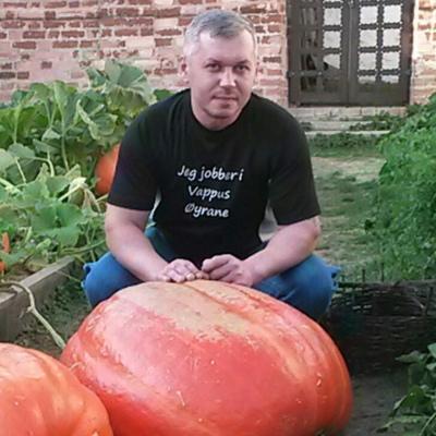 Андрей, 38, Petrovskoye