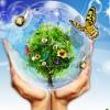 Ekologia Kafedra