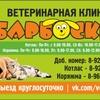 Ветеринарная клиника.БАРБОСКИН.Ветпомощь. Котлас