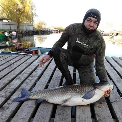 Андрей, 45, Rostov-na-Donu